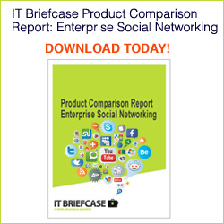 ITBriefcase Comparison Report