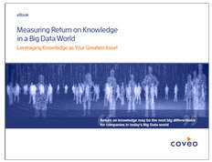 coveo book ebook: Measuring Return on Knowledge in a Big Data World