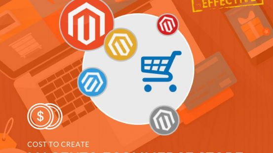 Approximate budget to develop a Magento eCommerce Store