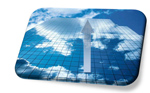 Cloud Market Growing sm Cloud Services: Young and Growing—but Need to Bridge the Technology/Business Gap