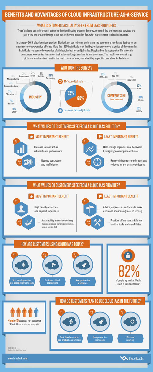 Bluelock Cloud Infographic Bluelock Infographic   What Customers Actually Seek from Cloud Providers