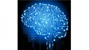 data brain 300x170 Introducing the New Retail BRAIN