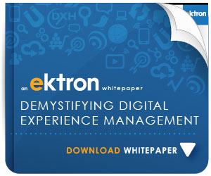 5d6bb621 634e 42fb a08d 9970291b06da DEMYSTIFYING DIGITAL EXPERIENCE MANAGEMENT