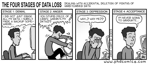 How serious is Data Loss? | IT Briefcase