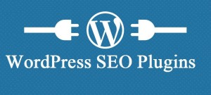 wordpress seo 300x135 Top WordPress SEO Plugins List For All Online Marketers