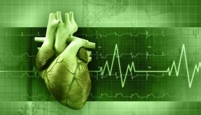Cardiac Monitoring & Cardiac Rhythm Management Market | IT Briefcase