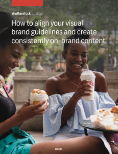 Screen Shot 2017 11 23 at 8.39.59 AM 231x300 How to align your visual brand guidelines and create consistently on brand content