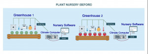 plant nursery 300x109 The Illustrated Cloud: Horticultural Division