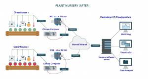 plant nursery 2 300x160 The Illustrated Cloud: Horticultural Division