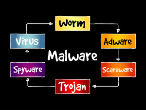 What Are The Different Types Of Malware?