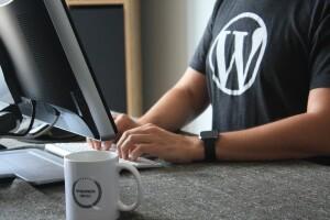 fikret tozak Zk Ydz2IAs unsplash 300x200 10 astuces WordPress pour les développeurs débutants
