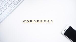launchpresso IOM28XWsk g unsplash 300x168 10 hacks WordPress pour les débutants